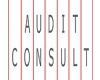 Audit Consult Brno, s.r.o.