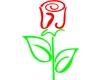 """Květinářství - Zahradnictví """"U růže"""""""