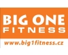 BIG ONE FITNESS