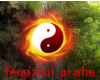 Feng Shui Praha