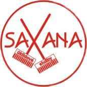 Saxana úklidové služby