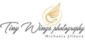 Tiny Wings studio