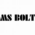 MS BOLT a.s.