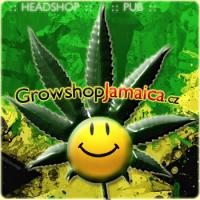 Growshop Jamaica