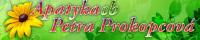 ApatykaCB – Petra Prokopcová