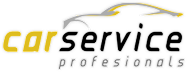 Car Service Profesionals