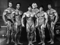 Sustanon 250 for bodybuilding