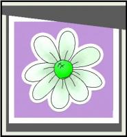 2B-Flowers designové květinářství