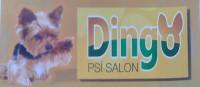 Psí salon DINGO