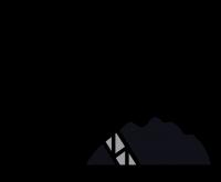 Uhlí Němcová
