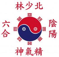 Česko-čínská akademie wugong