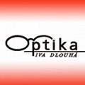 Iva Dlouhá