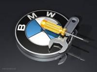 BMW Diely