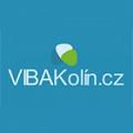 Vilém Bárta - VIBA