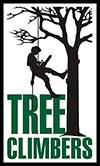TREE CLIMBERS – Daniel Dolenský
