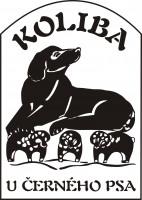 Koliba U černého psa