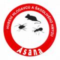 ASANA DDD – Roman Šimák