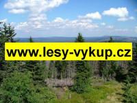 Výkup lesů a lesních pozemků