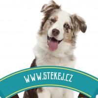 Štěkej.cz