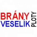 Václav Veselík