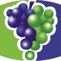 Global Wines, s.r.o.