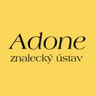 ADONE - znalecký ústav, Ing. Petr Schulmeister
