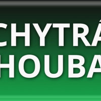 CHYTRÁ HOUBA
