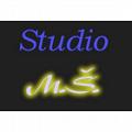 Vlasové studio MŠ