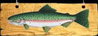 Rybník Rampichov – ráj pro rybáře
