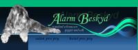 Alarm Beskyd