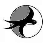 Sportovní klub Hirundo – lekce bojového umění Taekwondo