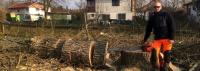 Výškové práce a kácení stromů – Radek Turčin