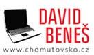 David Beneš - COMFOR