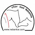 Chov koní Nebanice