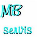 MB Servis