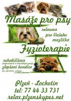 Plzeňský pes