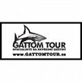 GATTOM TOUR
